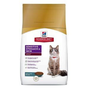 El mejor alimento para gatos para los persas, clasificado y revisado para el 2020