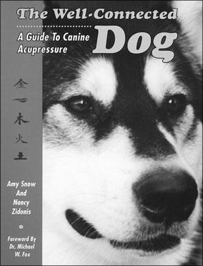 Perros Atléticos y Técnicas de Acupresión