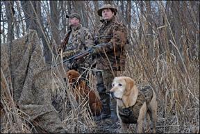 Entrenamiento positivo para perros de caza