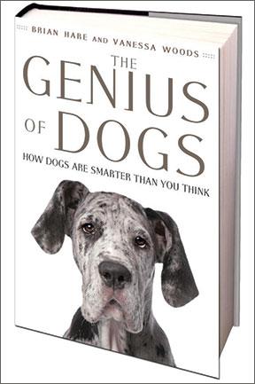 La mente del perro