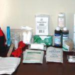 Botiquines de Primeros Auxilios para Perros: Lo que quieres, lo que necesitas y lo que no es esencial