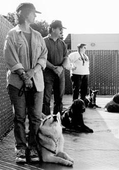 Los entrenadores de perros notan cómo los hombres y las mujeres pueden entrenar de manera diferente