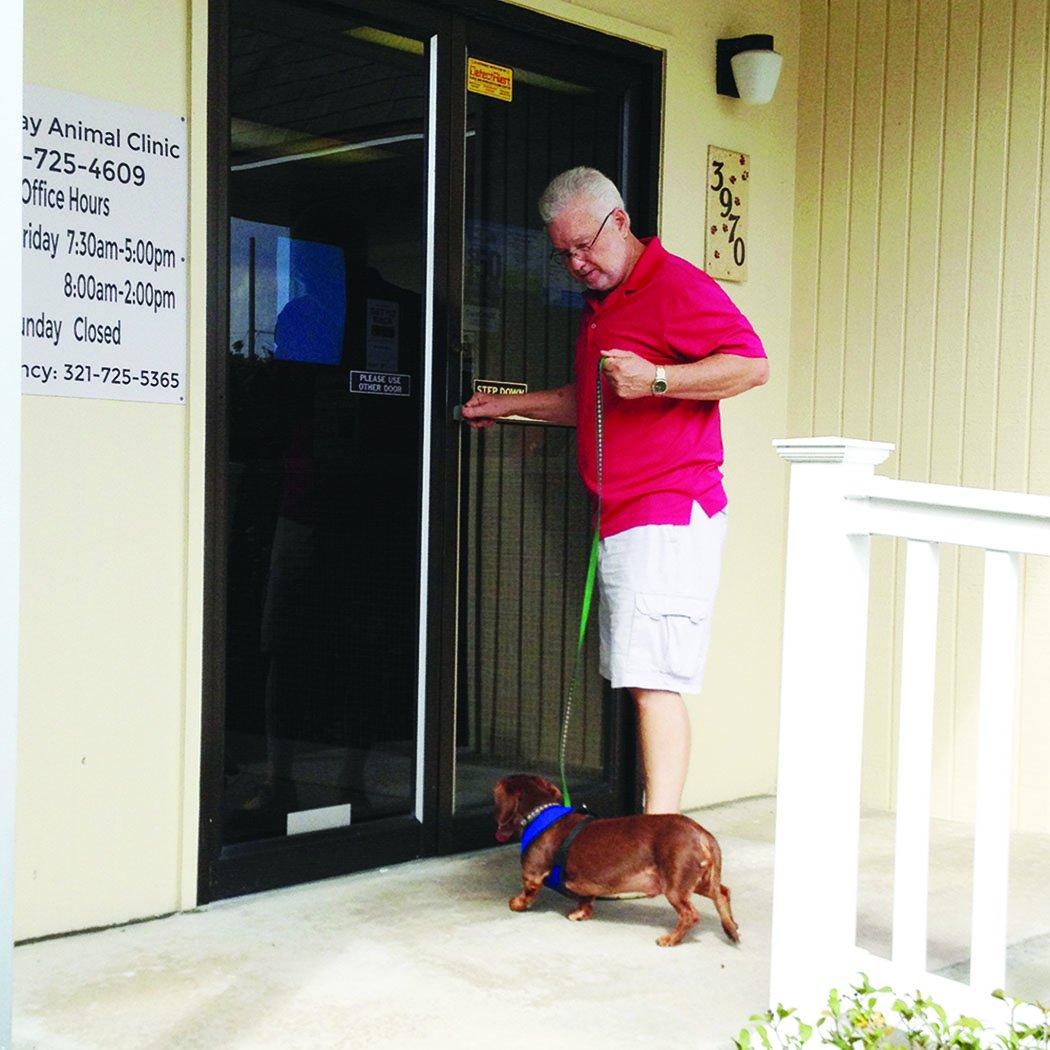 3 pasos para la visita veterinaria perfecta para tu perro (y para ti)