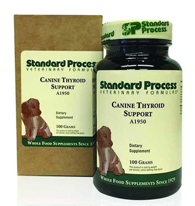 Tratamiento del hipotiroidismo de su perro