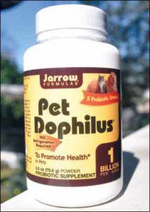 Cómo los prebióticos mejoran la digestión de su perro