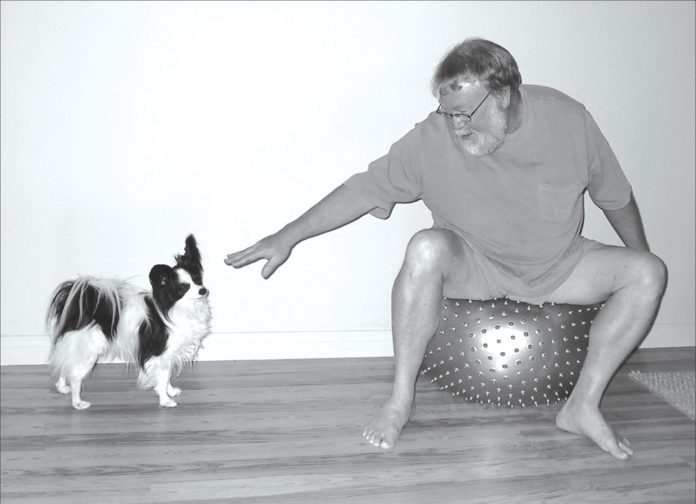 Cómo puede ayudar su perro con la terapia física