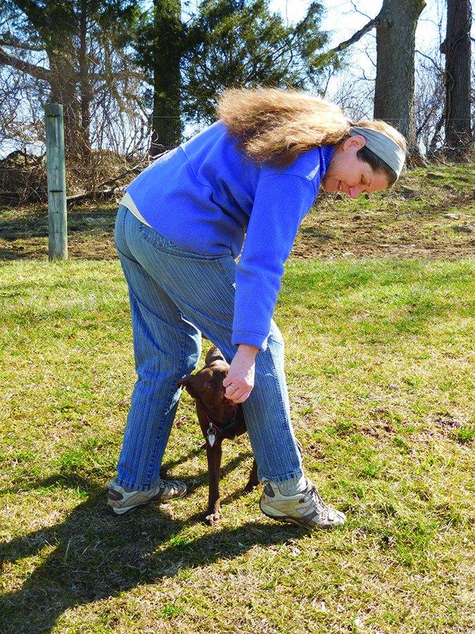 Diviértete entrenando a tu perro con nuevos trucos!