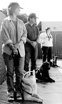 Elegir el entrenador de perros adecuado