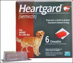 Actualización de la resistencia al gusano del corazón, septiembre de 2011