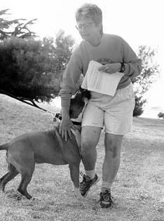 Comportamiento de la monta de perros y del dominio de los perros